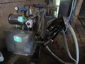 Penggunaan Peralatan Teknologi Tinggi Demi Menjamin Kualitas Susu yang digunakan di Kandang Sapi Perah Plosorejo