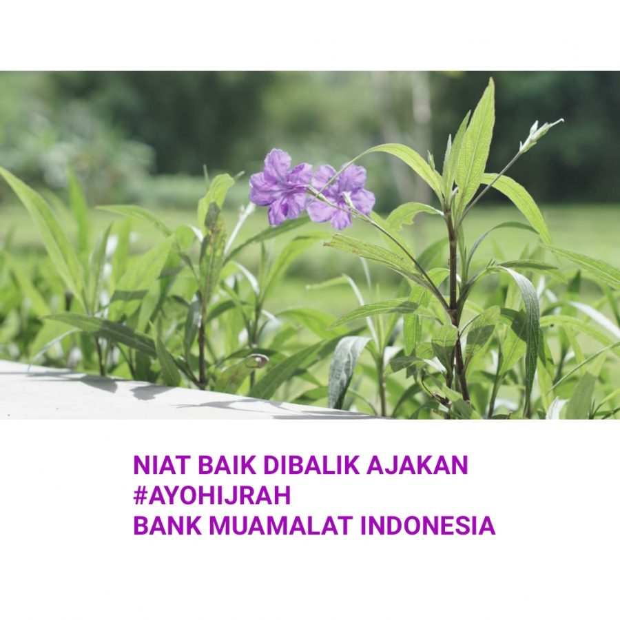 Niat Baik Dibalik Ajakan #AyoHijrah Bank Muamalat Indonesia