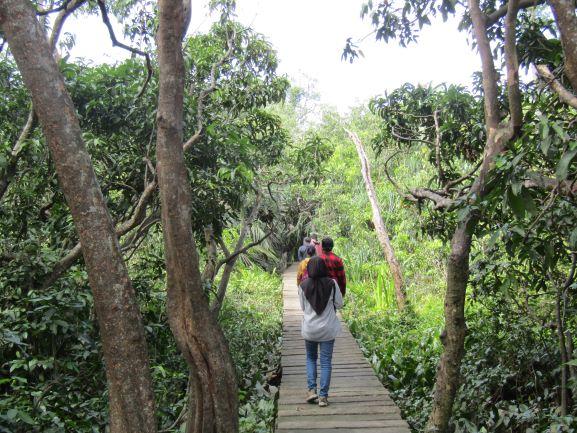 Jalur Trekking di Pulau Kembang (Dokumentasi Pribadi)